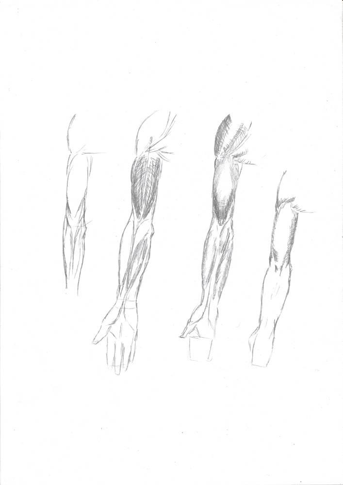 Rip's Sketchbook
