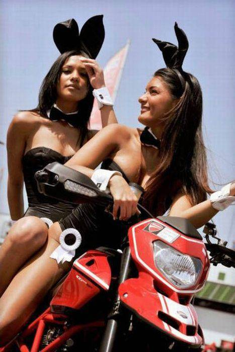 Dziewczyny Ducati 52