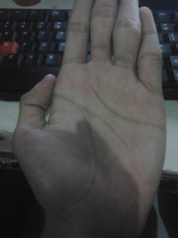Konsultasi dan Share tentang Palmistry dan Lainnya oleh Minibalanar