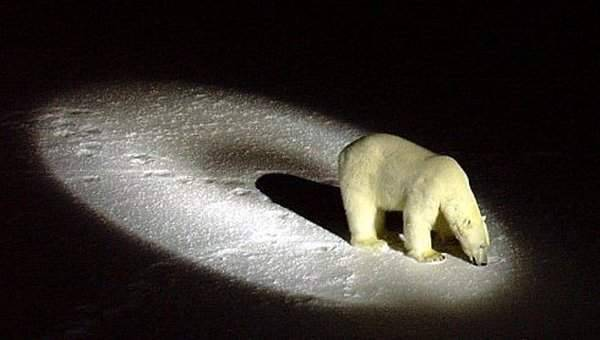 Arktyczna podróż atomowym lodołamaczem 37