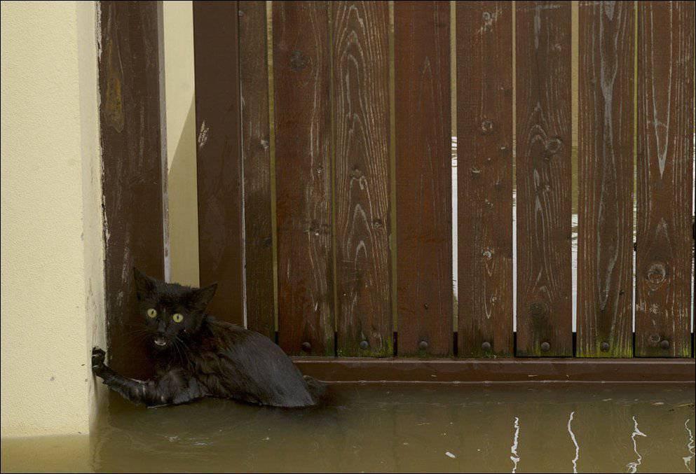 Powodzie w Europie 8