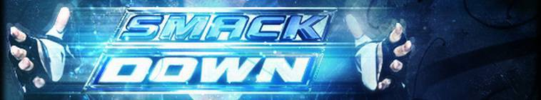 WWE Friday Night Smackdown 2013 11 15 HDTV XviD-AFG