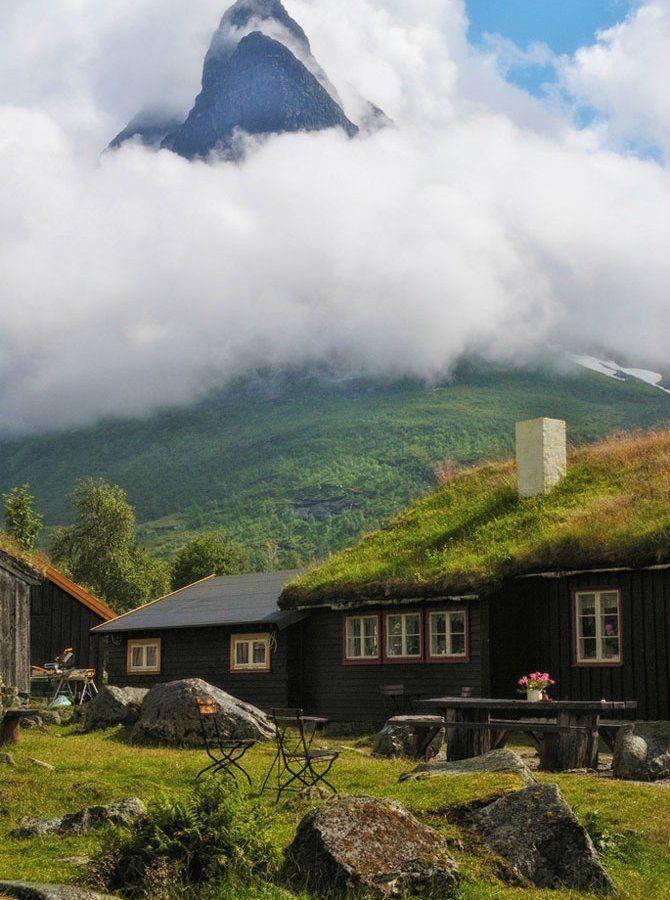 Zielone dachy w Norwegii #2 14