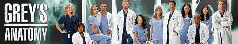 Greys Anatomy S10E11 HDTV XviD-AFG