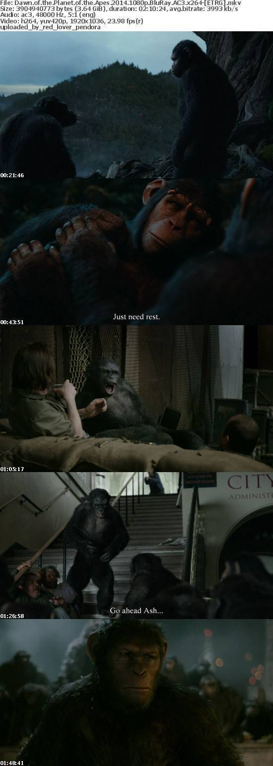 Dawn of the Planet of the Apes 2014 1080p BluRay AC3 x264-[ETRG]