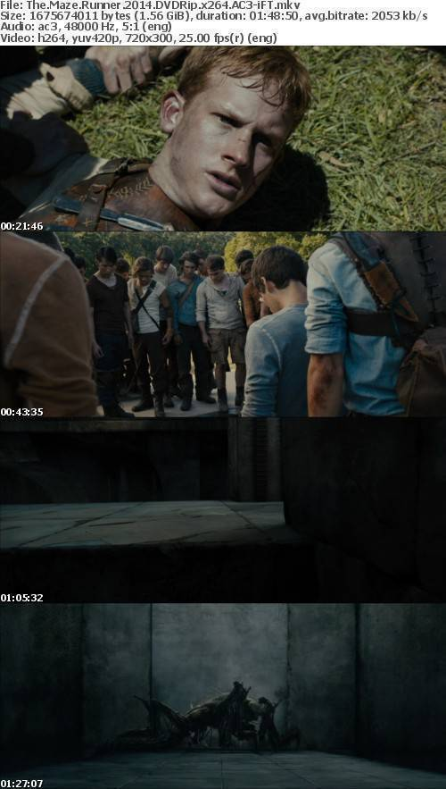 The Maze Runner 2014 DVDRip x264 AC3-iFT