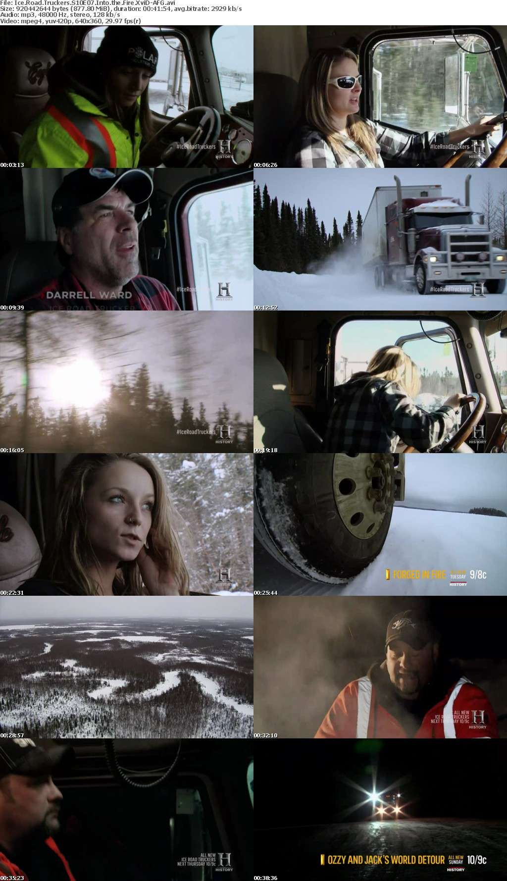 Ice Road Truckers S10E07 Into the Fire XviD-AFG