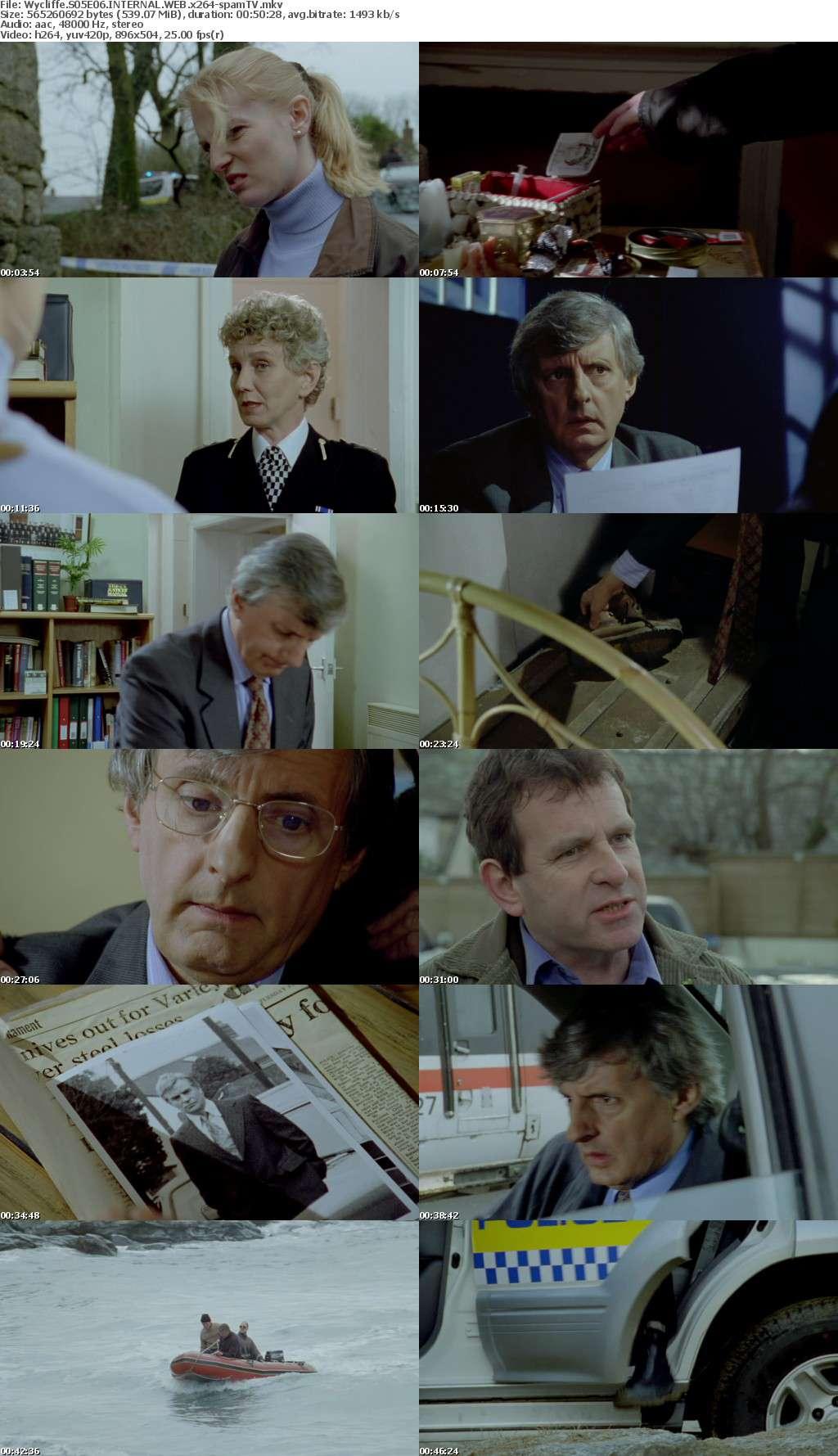 Wycliffe S05E06 INTERNAL WEB x264-spamTV