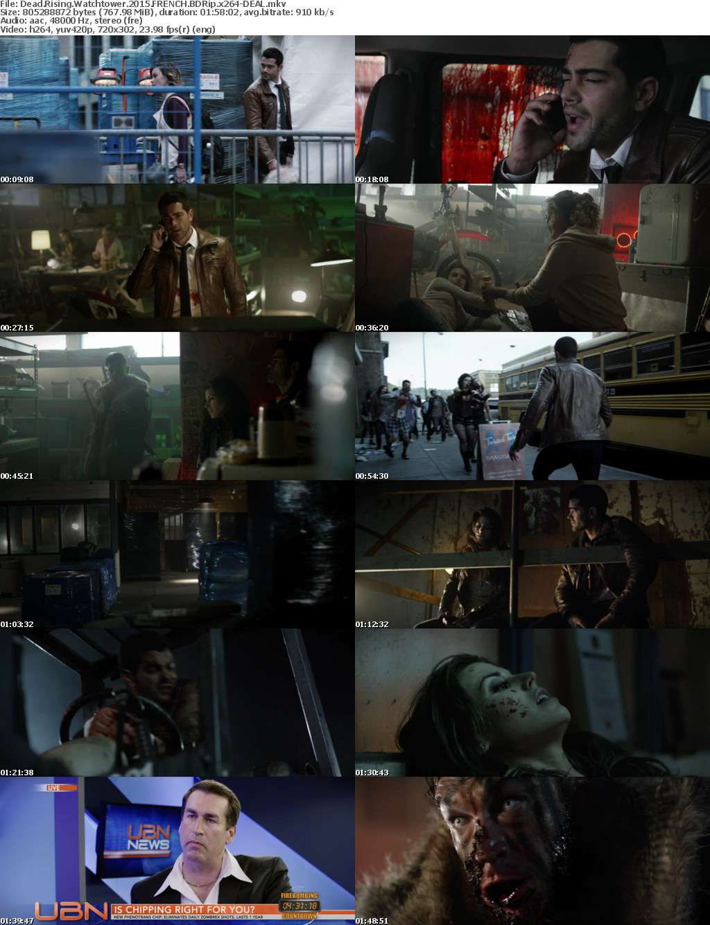 Dead Rising Watchtower 2015 FRENCH BDRip x264-DEAL