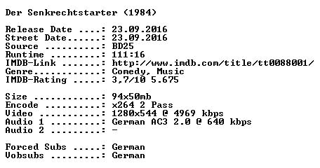 Der Senkrechtstarter 1984 German 720p BluRay x264-SPiCY