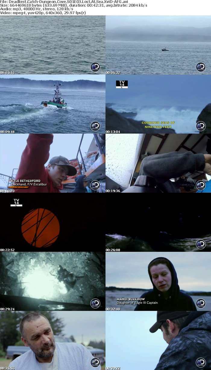 Deadliest Catch-Dungeon Cove S01E03 Lost At Sea XviD-AFG