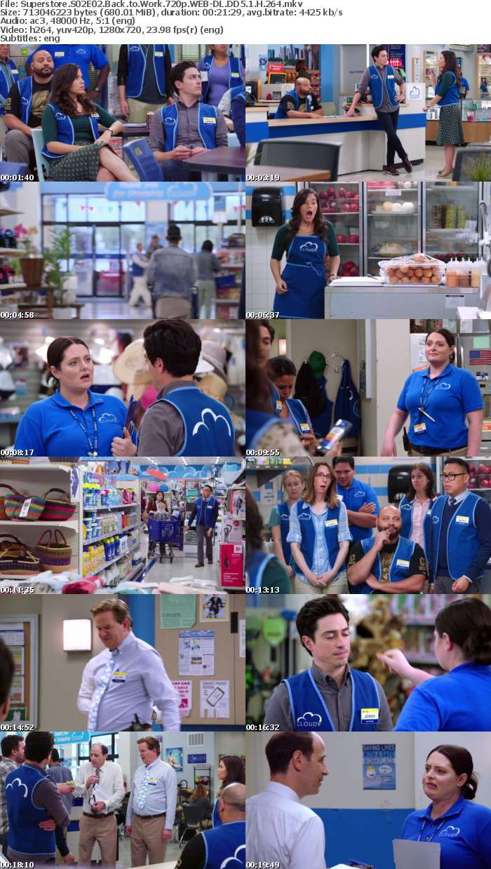 Superstore S02E02 Back to Work 720p WEB DL DD5 1 H 264