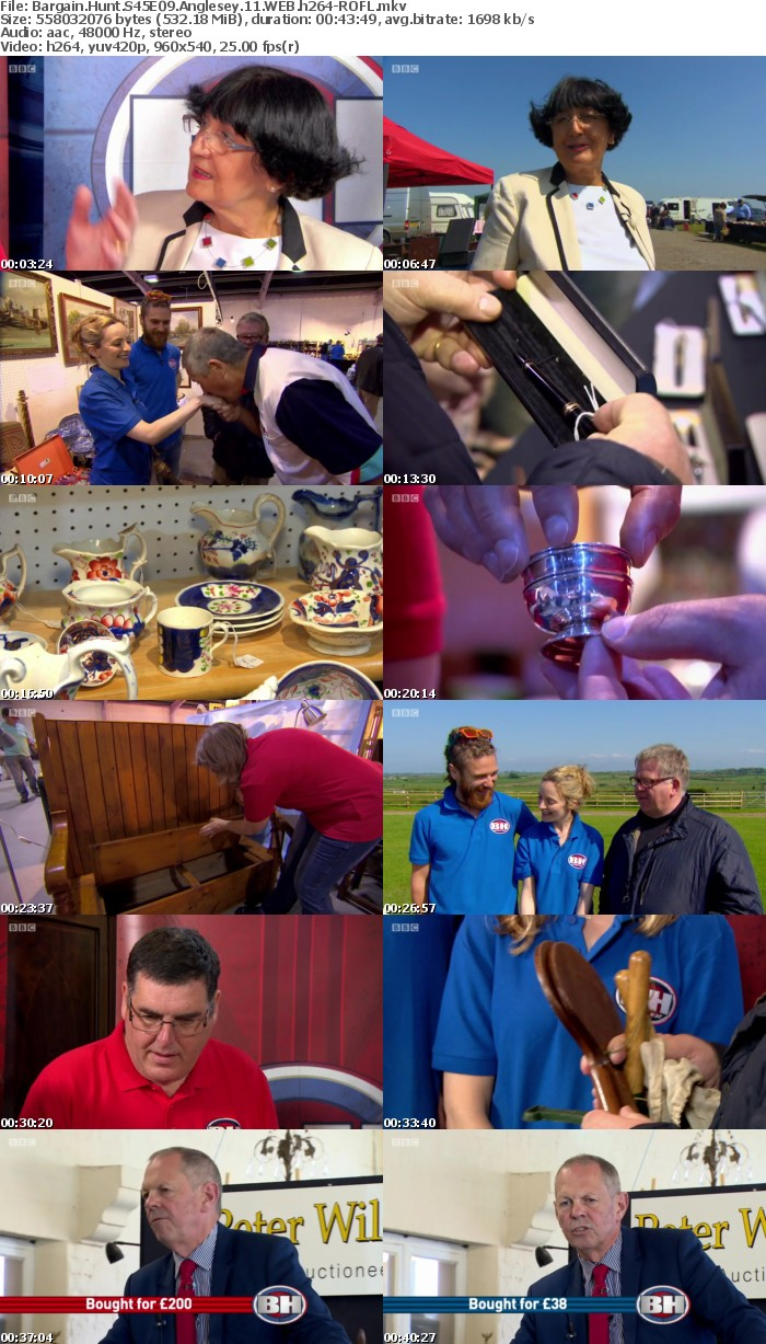 Bargain Hunt S45E09 Anglesey 11 WEB h264-ROFL