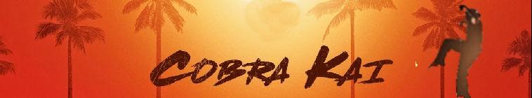 Cobra Kai S01E04 1080p WEB h264-CONVOY