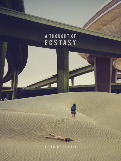A Thought of Ecstasy 2017 BRRip AC3 X264-CMRG