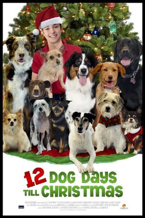 12 Dog Days Till Christmas 2014 DVDRip x264-REGRET