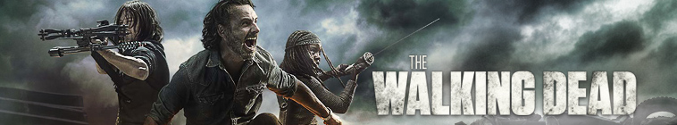 The Walking Dead S08E12 HDTV x264-SVA
