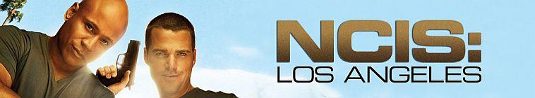 NCIS Los Angeles S09E18 720p HDTV X264-DIMENSION