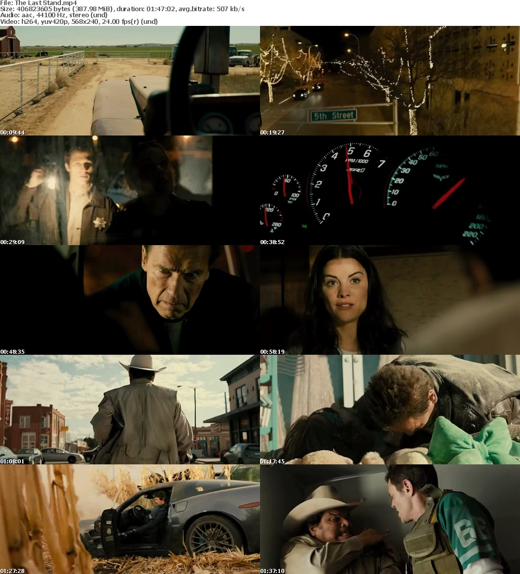 The Last Stand (2013) BRRip x264 380MB-DLW