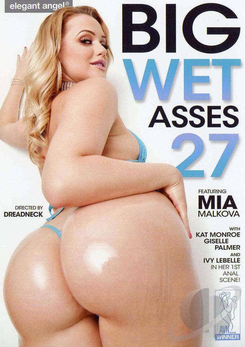 Big Wet Asses 27 XXX DVDRip x264-CiCXXX
