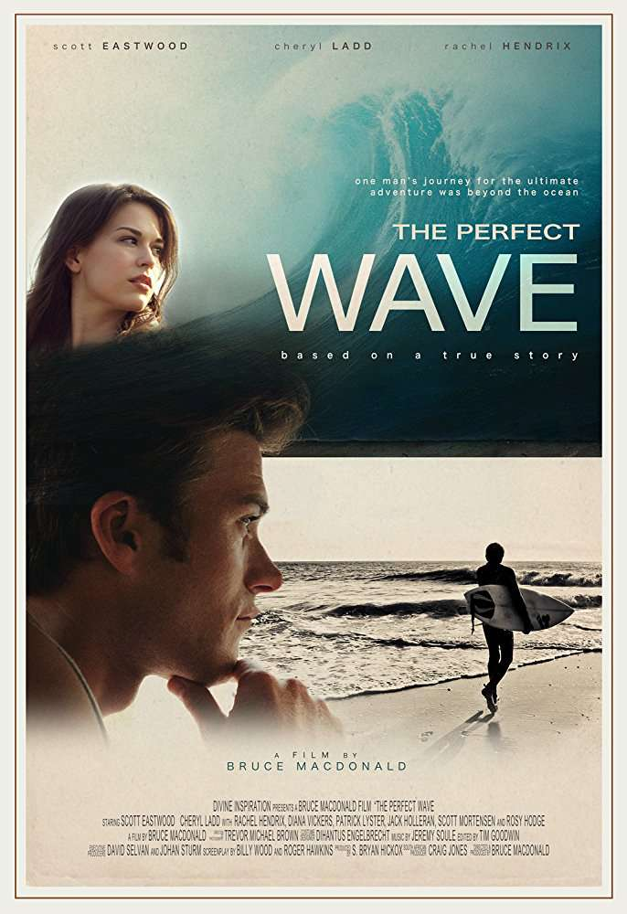 The Perfect Wave 2014 BRRip XviD MP3-XVID