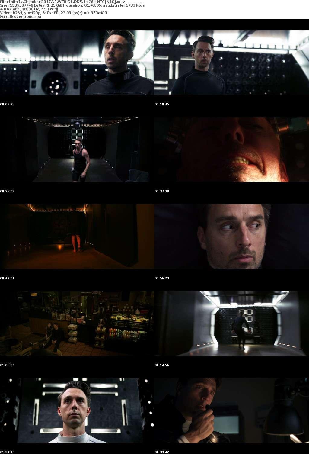 Infinity Chamber (2017) NF WEB-DL DD5.1 x264-NTG