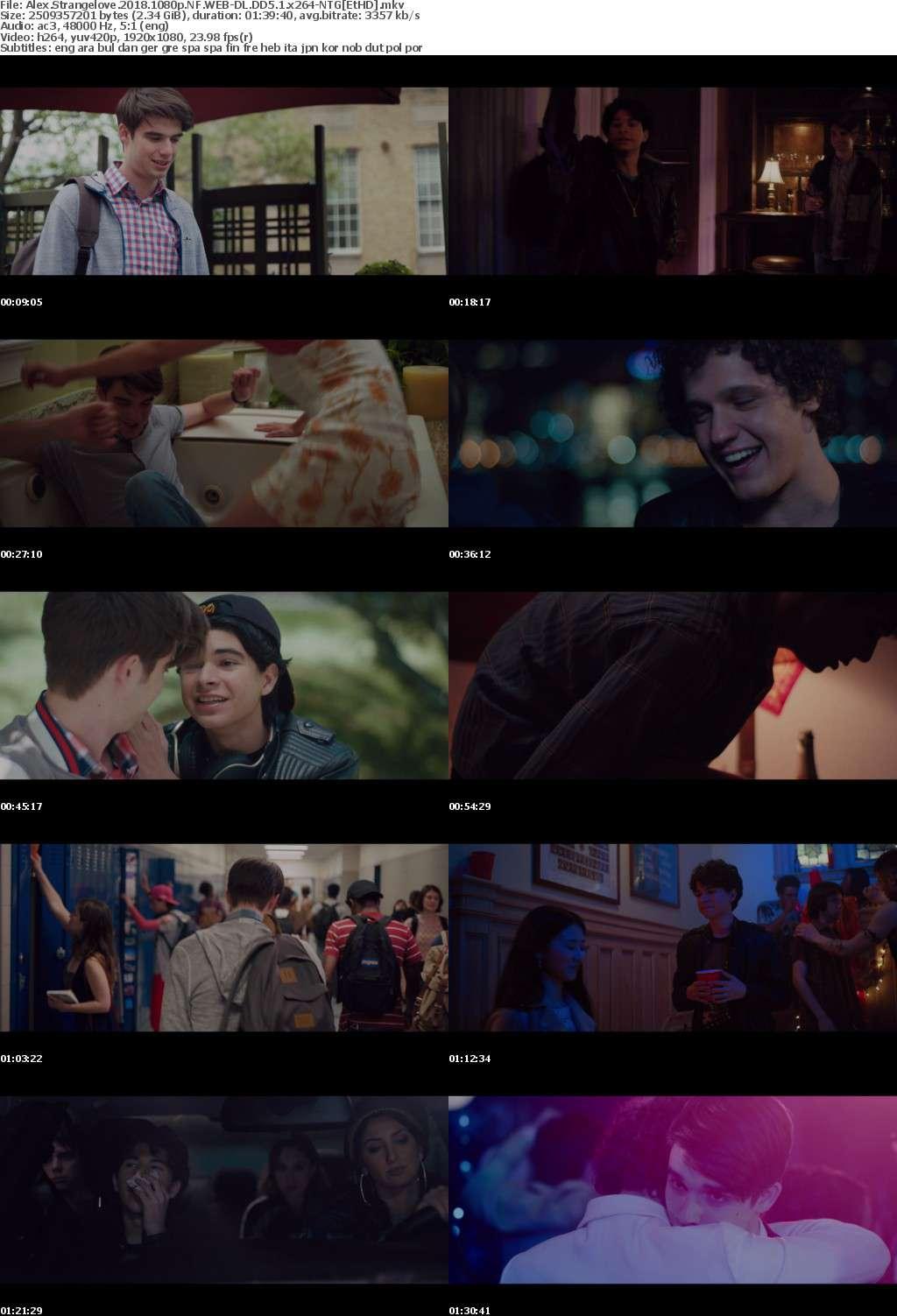 Alex Strangelove (2018) 1080p NF WEB-DL DD5 1 x264-NTG