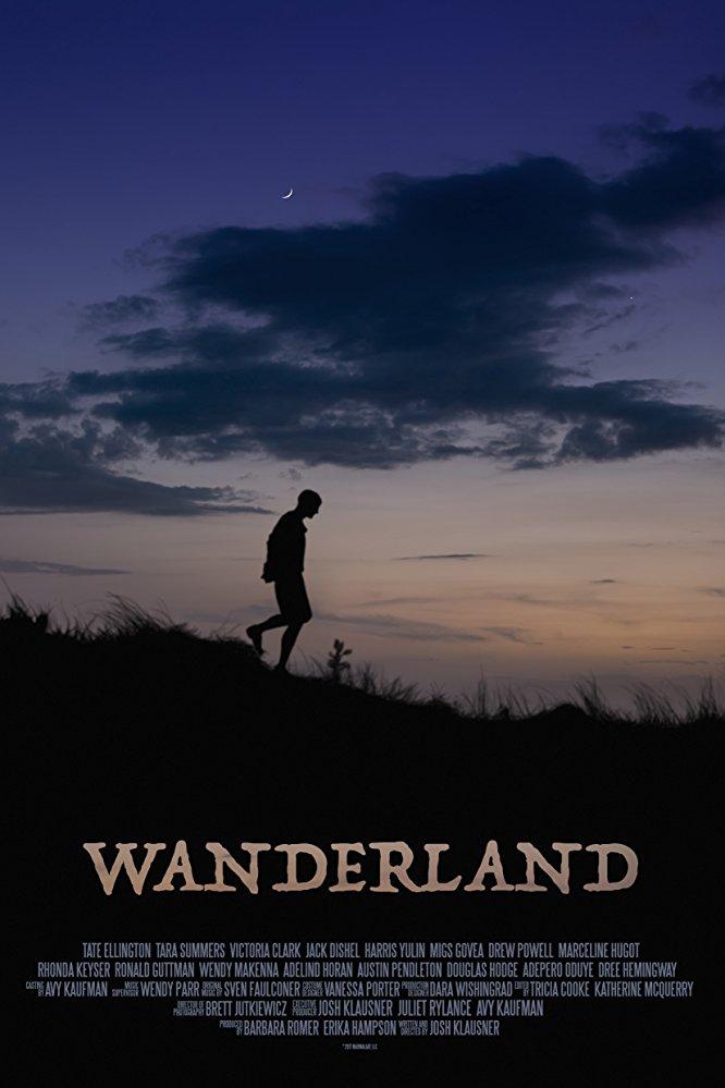 Wanderland 2018 1080p AMZN WEB-DL DDP5 1 H 264-NTG[EtHD]