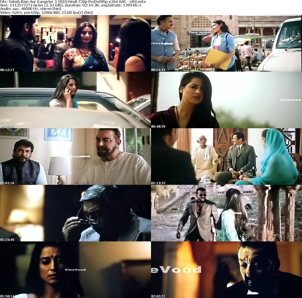 Saheb Biwi Aur Gangster 3 2018 Hindi 720p PreDvDRip x264 AAC - xRG