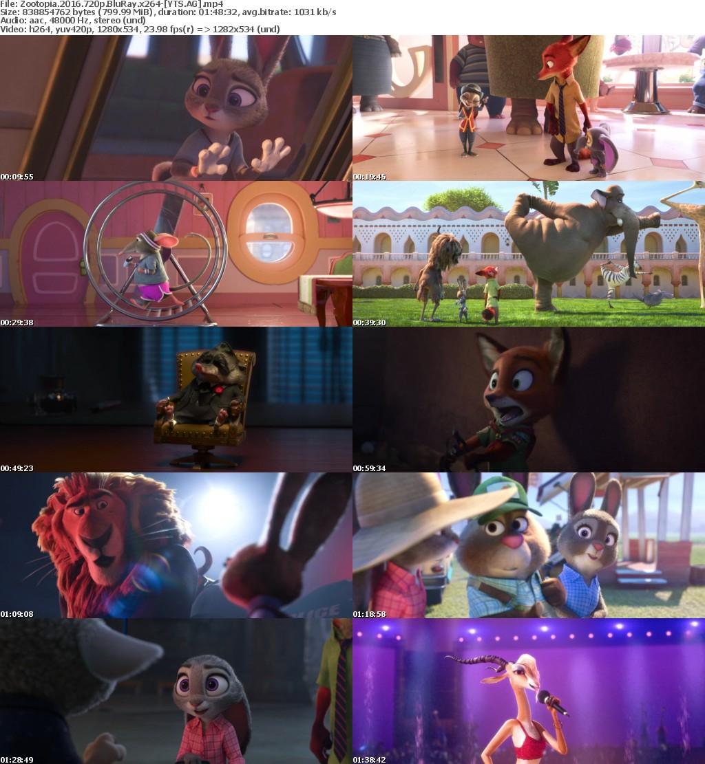 Zootopia (2016) [BluRay] [720p] YIFY