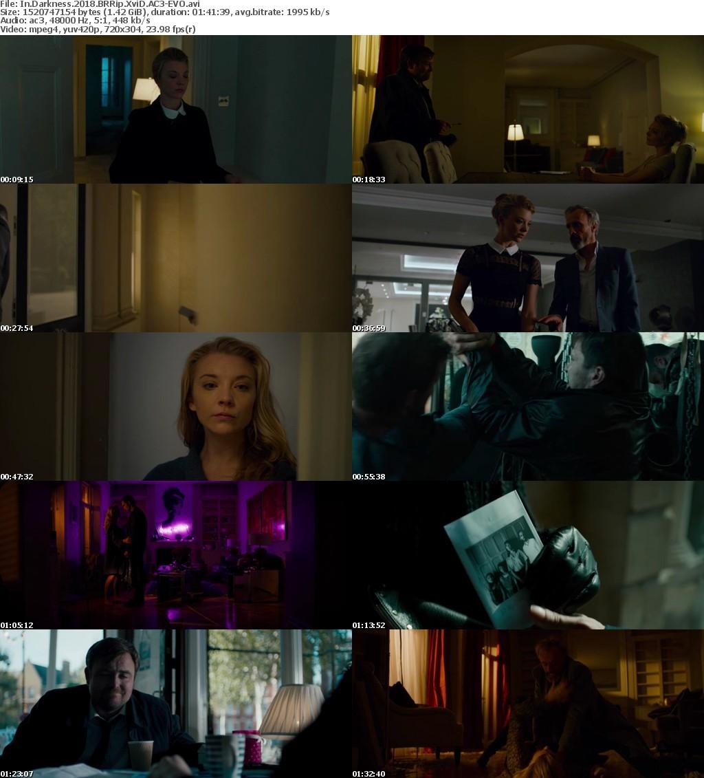 In Darkness (2018) BRRip XviD AC3-EVO
