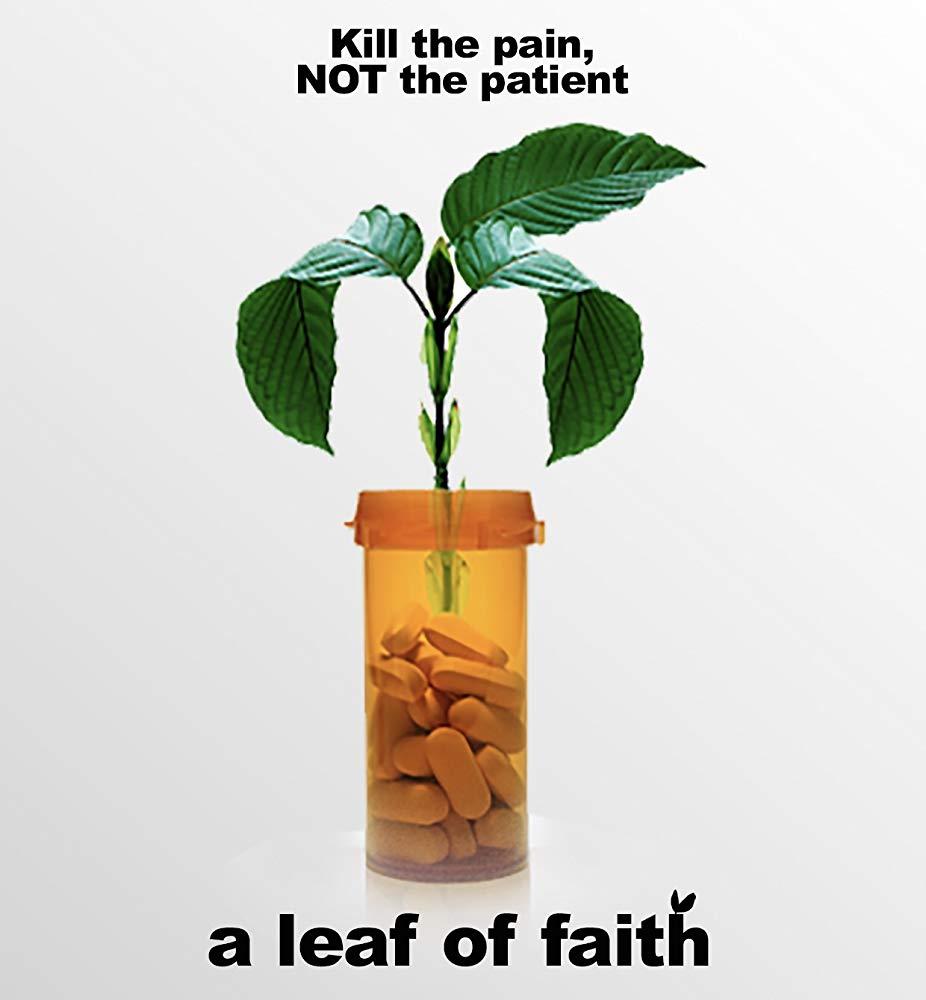 A Leaf of Faith 2018 NF WEB-DL DDP2 0 x264-NTG