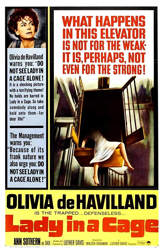 Lady In A Cage 1964 DVDRip x264-CG