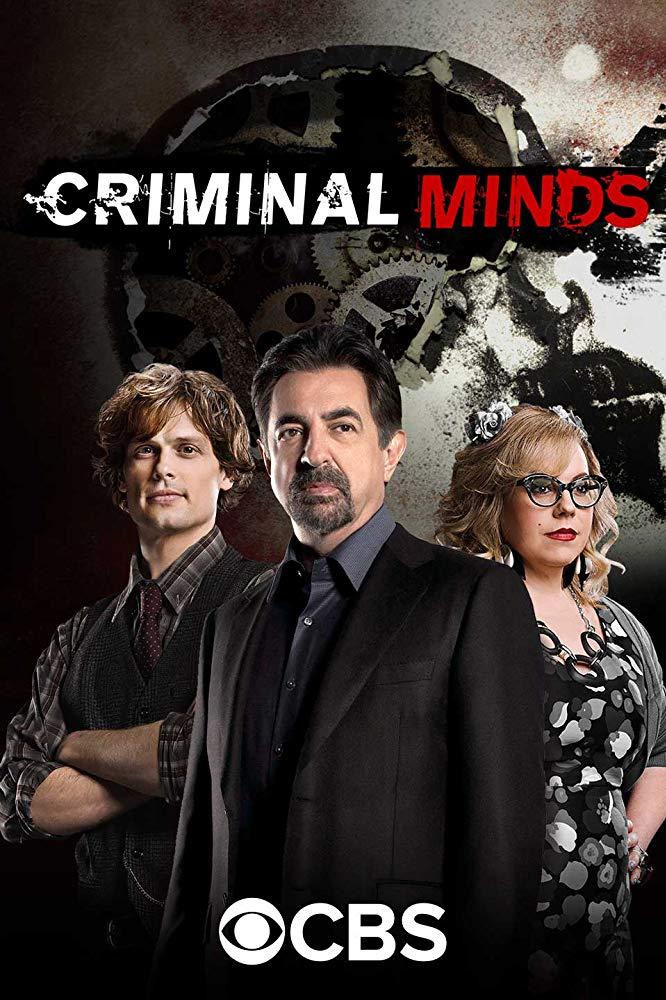 Criminal Minds S14E04 XviD-AFG