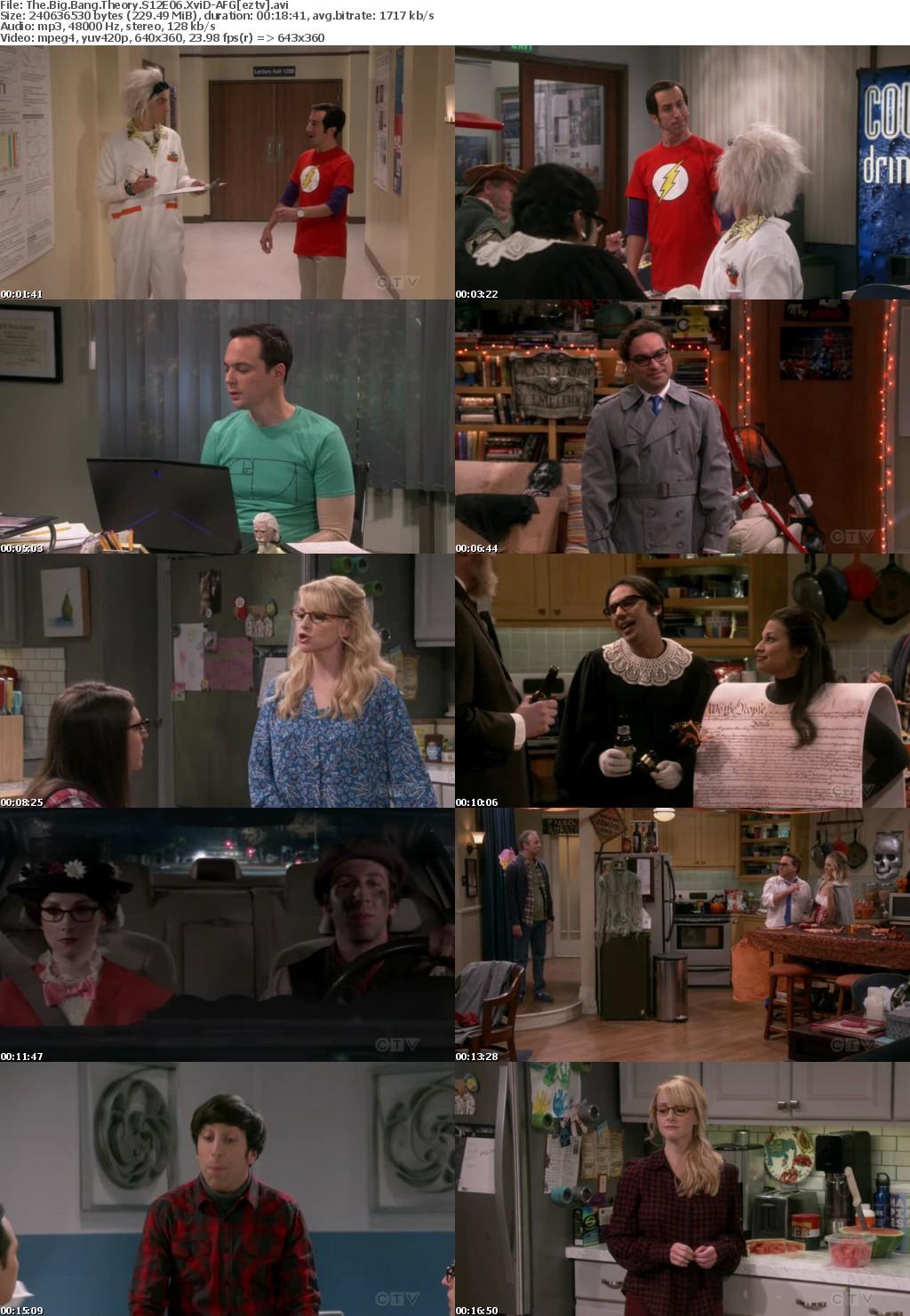 The Big Bang Theory S12E06 XviD-AFG