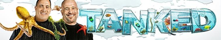 Tanked S15E04 Urijah Fabers Ultimate Fish Tank 720p AMZN WEB-DL DDP2 0 H 264-NTb