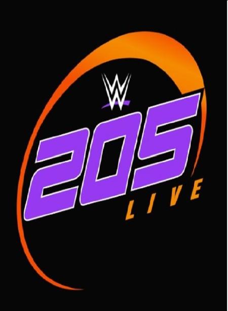 WWE 205 Live (2018) 12 12 WEB h264-HEEL