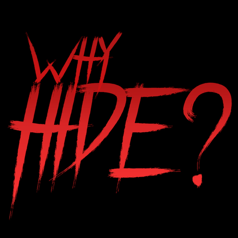 Why Hide 2018 WEBRip x264-ION10