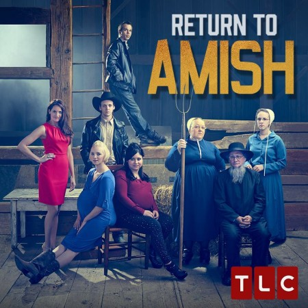 Return to Amish S05E06 480p x264-mSD