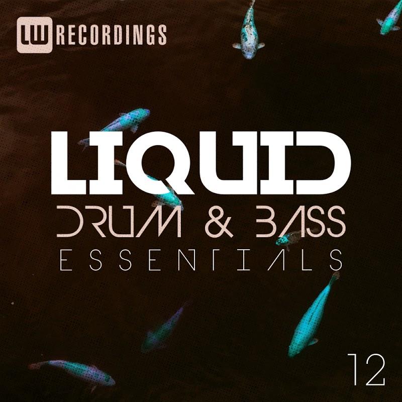 VA - Liquid Drum and Bass Essentials Vol 12 (2019)