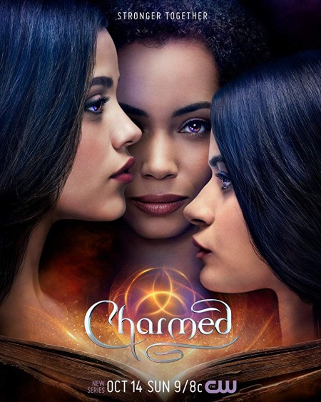 Charmed 2018 S01E10 iNTERNAL 480p x264-mSD