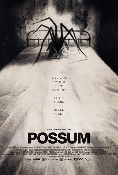 Possum (2018) BRRip AC3 X264-CMRG