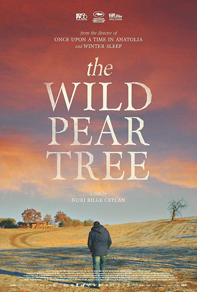 The Wild Pear Tree 2018 1080p BluRay x264-DEPTH