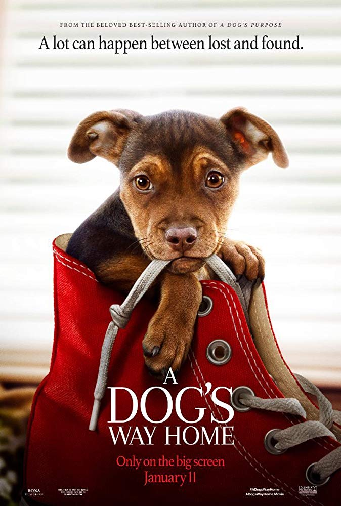 A Dogs Way Home 2019 720p HC HDRip 800MB x264-GalaxyRG