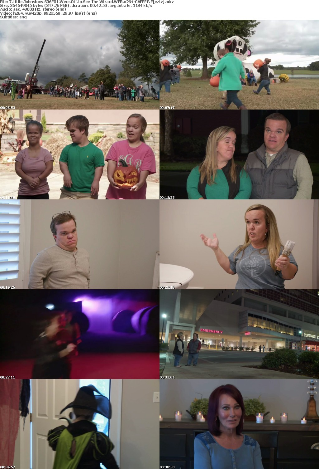 7 Little Johnstons S06E01 Were Off to See The Wizard WEB x264-CAFFEiNE