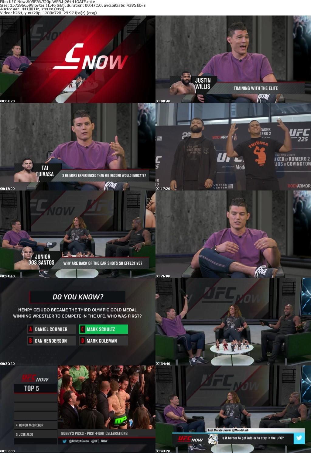 UFC Now S05E36 720p WEB h264-LiGATE