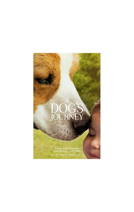 A Dogs Journey 2019 720p HDCAM 900MB 1xbet x264-BONSAI