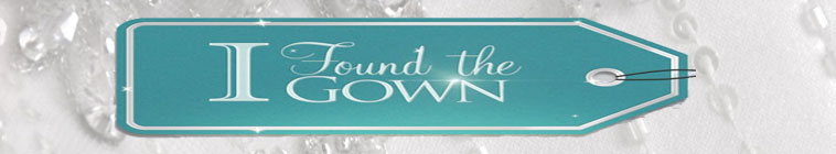 I Found the Gown S01E01 Persistence Makes Perfect 720p WEB x264-GIMINI