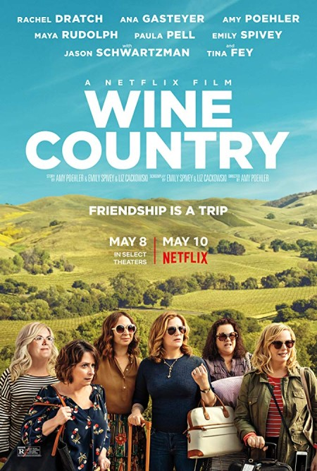 Wine Country (2019) iNTERNAL 1080p WEB x264-STRiFErarbg