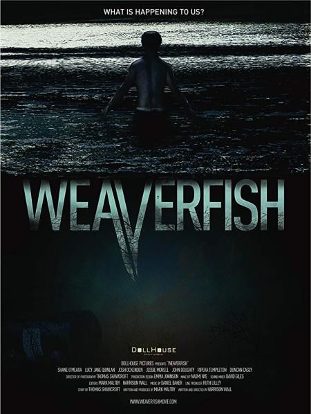 Weaverfish (2013) 1080p WEBRip x264  RARBG
